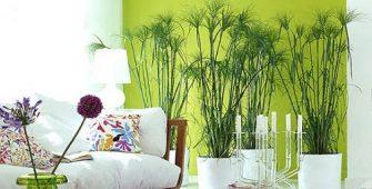 Гостиная в салатовом цвете